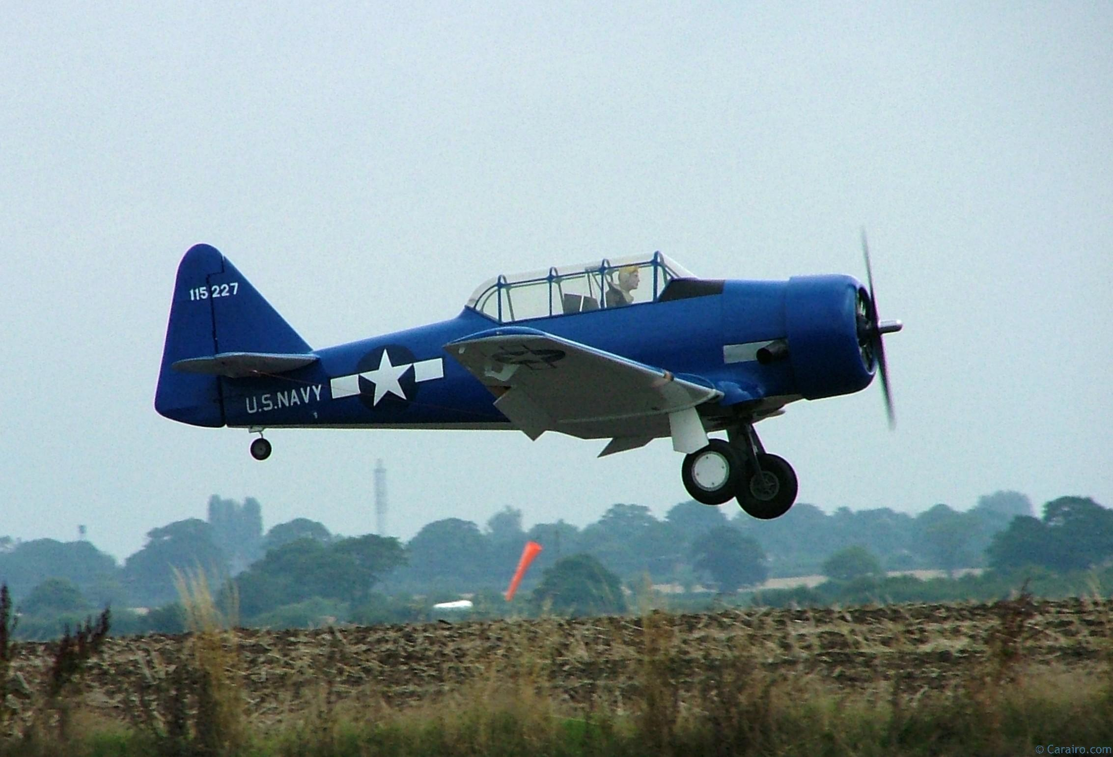 Radio Controlled - Texan fly past
