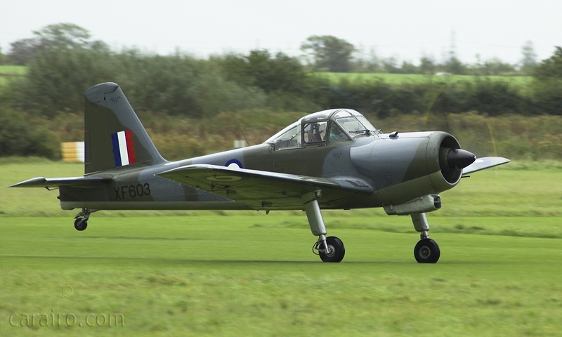 Percival Provost T1 taking off