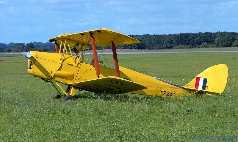 A superb example of a Tiger Moth